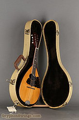 c.1920 S.S. Stewart Mandolin Rosewood Flatback Image 15
