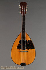 c.1920 S.S. Stewart Mandolin Rosewood Flatback Image 7
