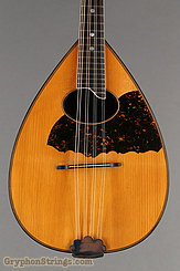 c.1920 S.S. Stewart Mandolin Rosewood Flatback Image 8
