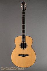 1995 Dupont Guitar FL200 Custom Image 1