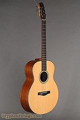 1995 Dupont Guitar FL200 Custom Image 2