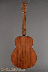 1995 Dupont Guitar FL200 Custom Image 4