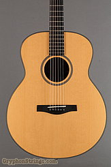 1995 Dupont Guitar FL200 Custom Image 8