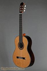 New World Guitar Player P650, Cedar top NEW Image 6