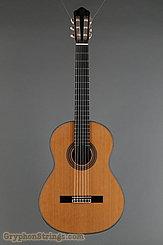 New World Guitar Player P650, Cedar top NEW Image 7