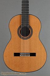 New World Guitar Player P650, Cedar top NEW Image 8