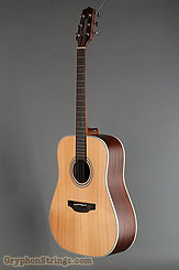 Takamine Guitar GD20 NS NEW Image 6