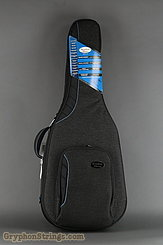 Reunion Blues Case Voyager Semi/Hollow Body Electric Guitar Case NEW