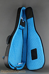 Reunion Blues Case Voyager Semi/Hollow Body Electric Guitar Case NEW Image 5