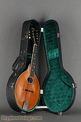 1913 Gibson Mandolin A-1 Image 16