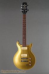 1991 Hamer Guitar Archtop Gold