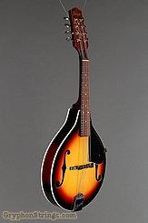 c. 1985 Ibanez Mandolin M511 Image 2