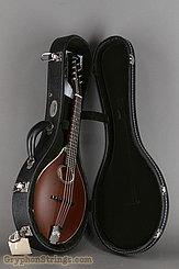 Collings Mandolin MT O, Sheraton Brown Mandolin NEW Image 11