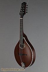 Collings Mandolin MT O, Sheraton Brown Mandolin NEW Image 6