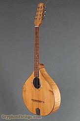 2010 W. A. Petersen Octave Mandolin Level 2 Maple Image 6
