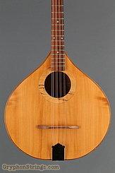 2010 W. A. Petersen Octave Mandolin Level 2 Maple Image 8