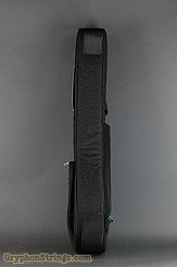 Reuinion Blues Case RB Continental Voyager Banjo NEW Image 2
