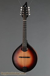 2013 Breedlove Mandolin American 00