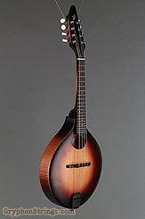 2013 Breedlove Mandolin American 00 Image 2