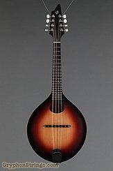 2013 Breedlove Mandolin American 00 Image 7