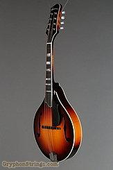 Eastman Mandolin MD605 Sunburst NEW Image 6