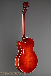 Eastman Guitar AR503ce NEW Image 5
