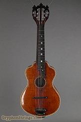 c. 1915 Bohmann Guitar Harp Guitar