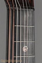 c. 1915 Bohmann Guitar Harp Guitar Image 12