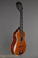 c. 1915 Bohmann Guitar Harp Guitar Image 2