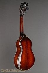 c. 1915 Bohmann Guitar Harp Guitar Image 5