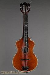 c. 1915 Bohmann Guitar Harp Guitar Image 7