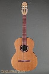 Kremona Guitar S65C GG NEW Image 1