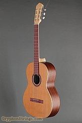Kremona Guitar S65C GG NEW Image 6
