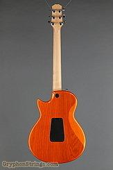 2009 Taylor Guitar SB-1X HSS (SolidBody Classic) Image 4