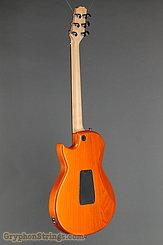 2009 Taylor Guitar SB-1X HSS (SolidBody Classic) Image 5