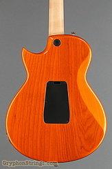 2009 Taylor Guitar SB-1X HSS (SolidBody Classic) Image 9