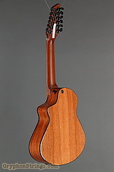 Veillette Guitar Avante Gryphon, Natural NEW Image 5