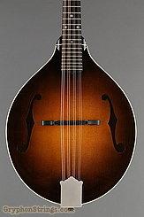 2019 Pava Mandolin A5 Player Image 8