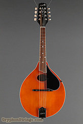 Kentucky Mandolin KM-272 NEW Image 7