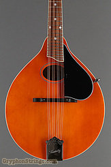 Kentucky Mandolin KM-272 NEW Image 8
