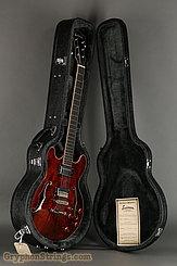 2016 Eastman Guitar T184-MX Classic Image 15