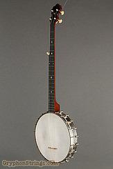 1894 S.S. Stewart Banjo Universal Favorite No.1 Image 6