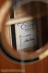 2016 Hive Ukulele The Hornet Image 9