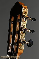 New World Guitar Estudio 650, Spruce  NEW Image 5