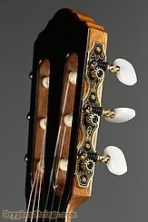 New World Guitar Player 650 Fingerstyle, Spruce NEW Image 5