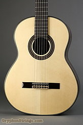 New World Guitar Player 650 Spruce NEW Image 1