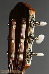 New World Guitar Player 640 Fingerstyle, Spruce NEW Image 5