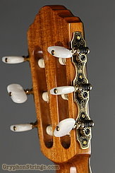 New World Guitar Player 640 Fingerstyle, Spruce NEW Image 6