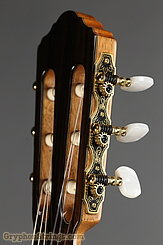 New World Guitar Player 615 Cedar NEW Image 5