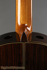 New World Guitar Player P640, Spruce top NEW Image 5